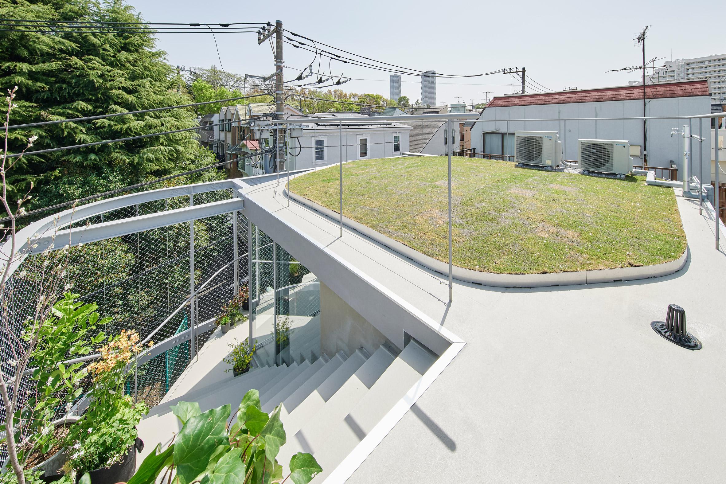 A residential roof garden