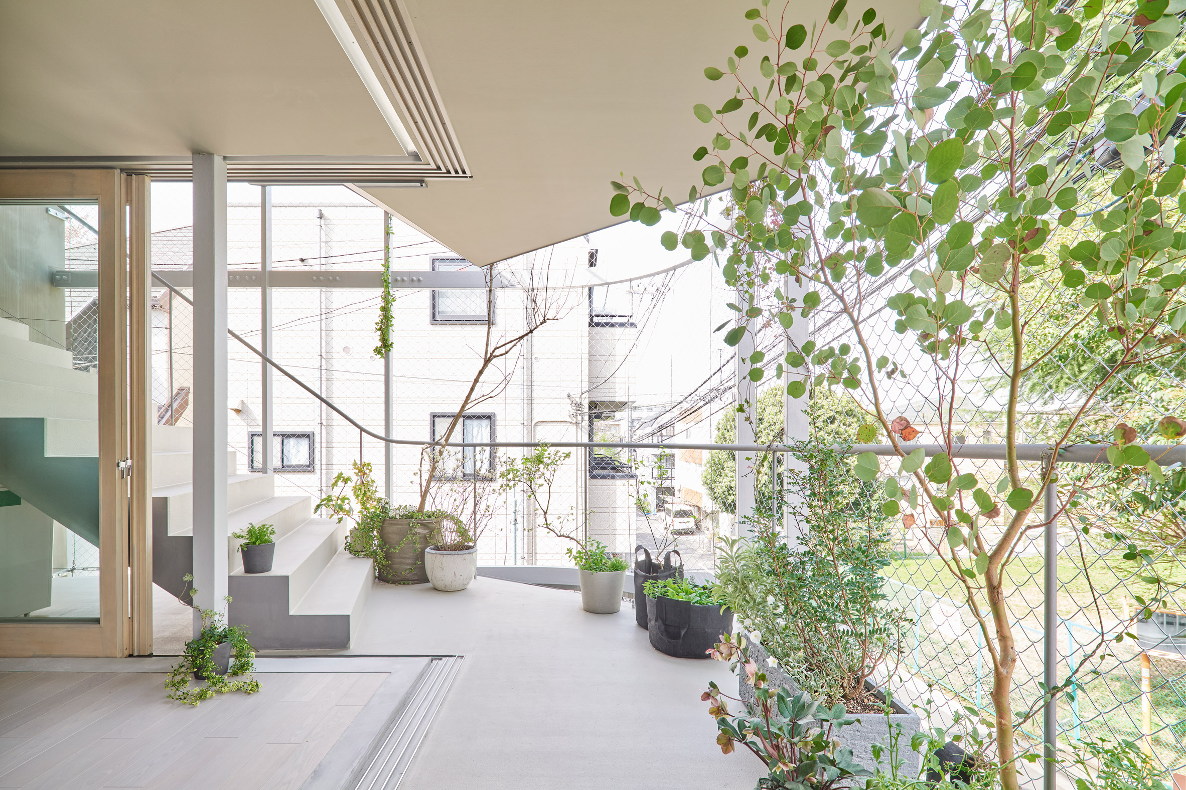 A plant-filled balcony