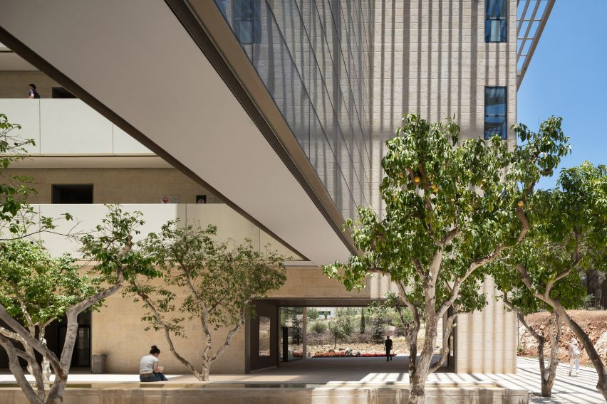 A courtyard with grapefruit trees
