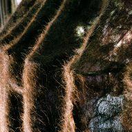 Pareid uses human hair to measure urban pollution in Bangkok