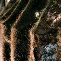 Hair felt created as part of Follicle, a project by Pareid at Bangkok Design Week