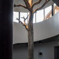 Hans Christian Andersen Museum designed by Kengo Kuma in Odense