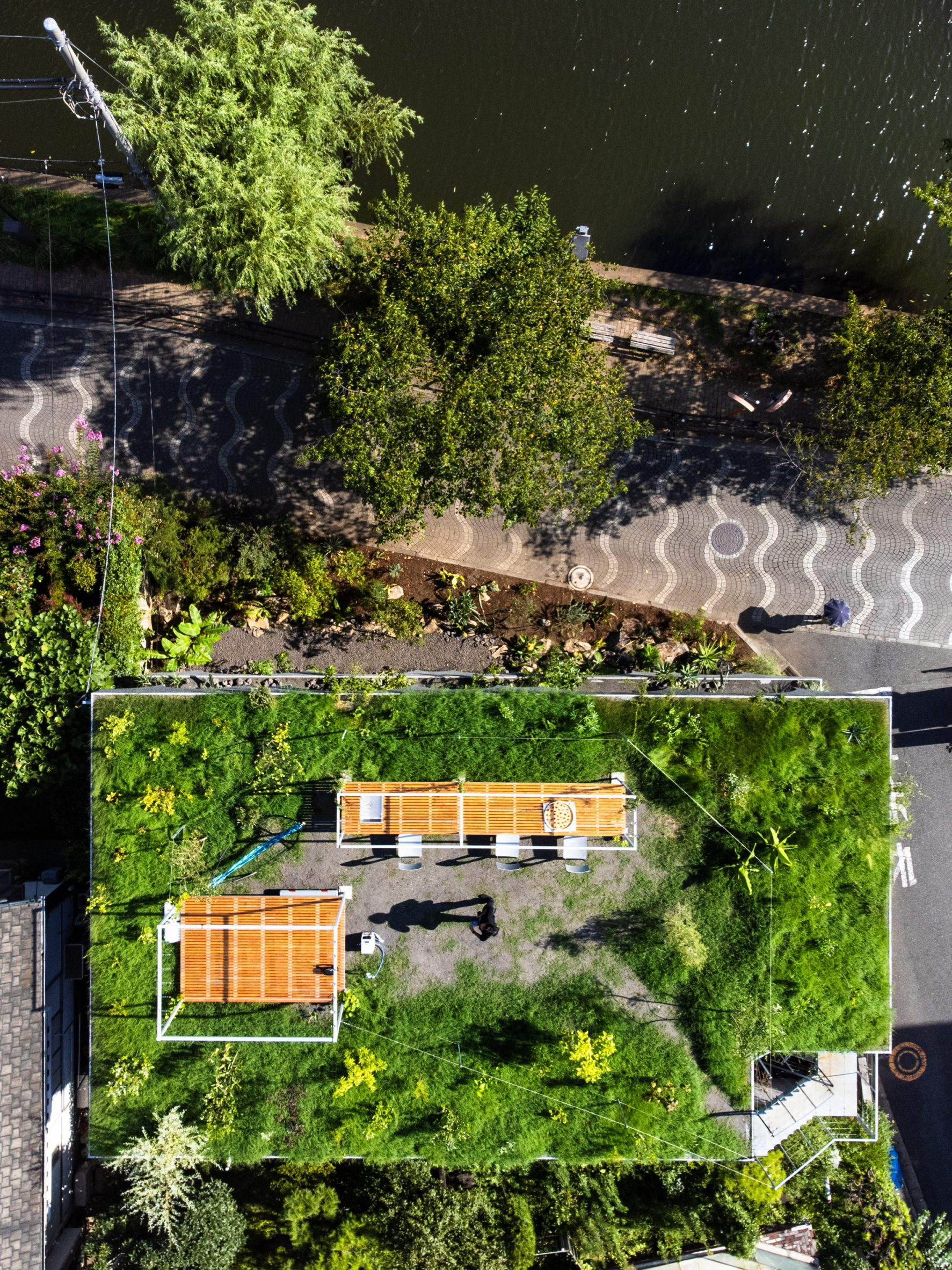 Green roof on Japanese house