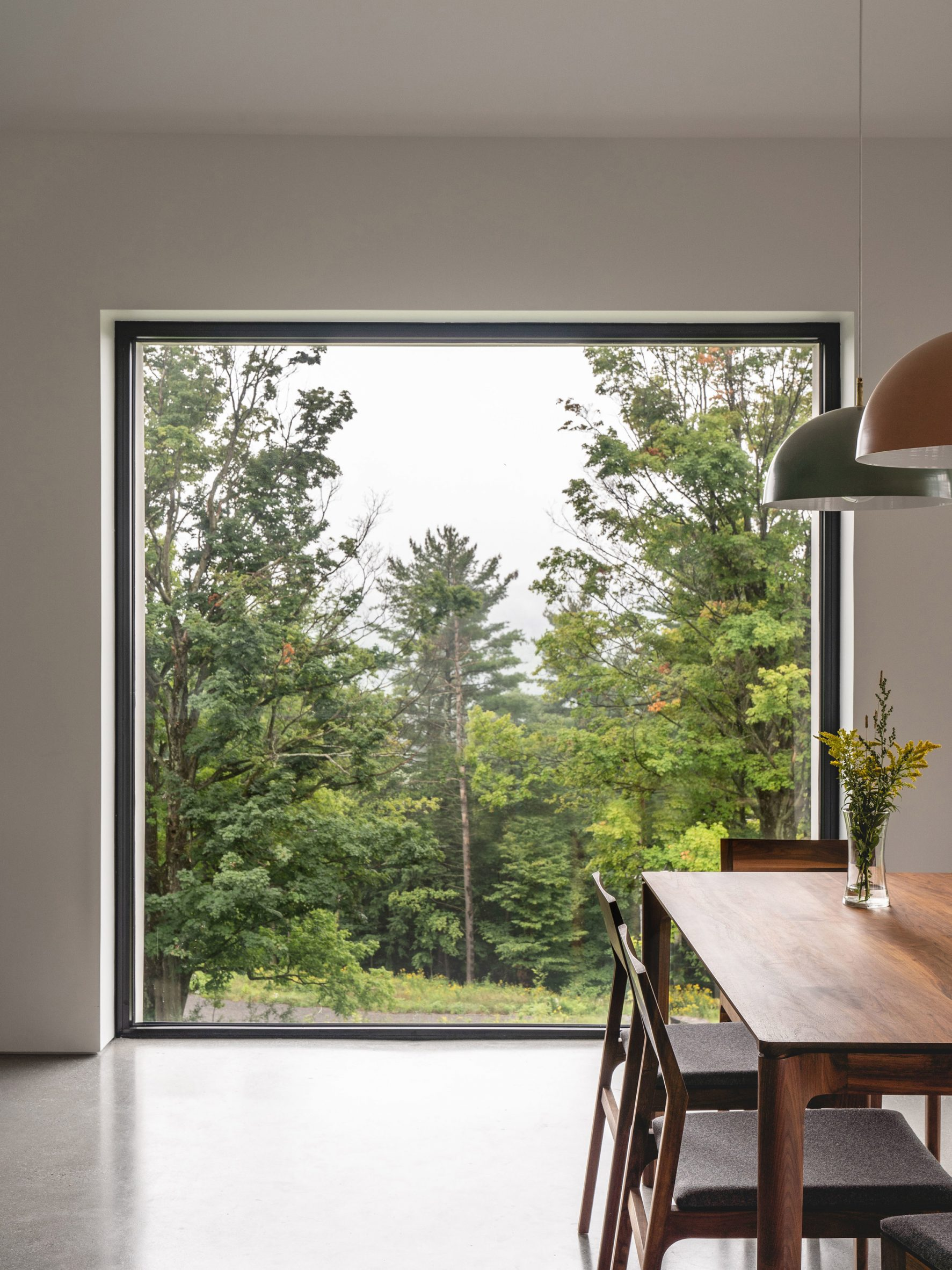 Forest view framed through dining room window