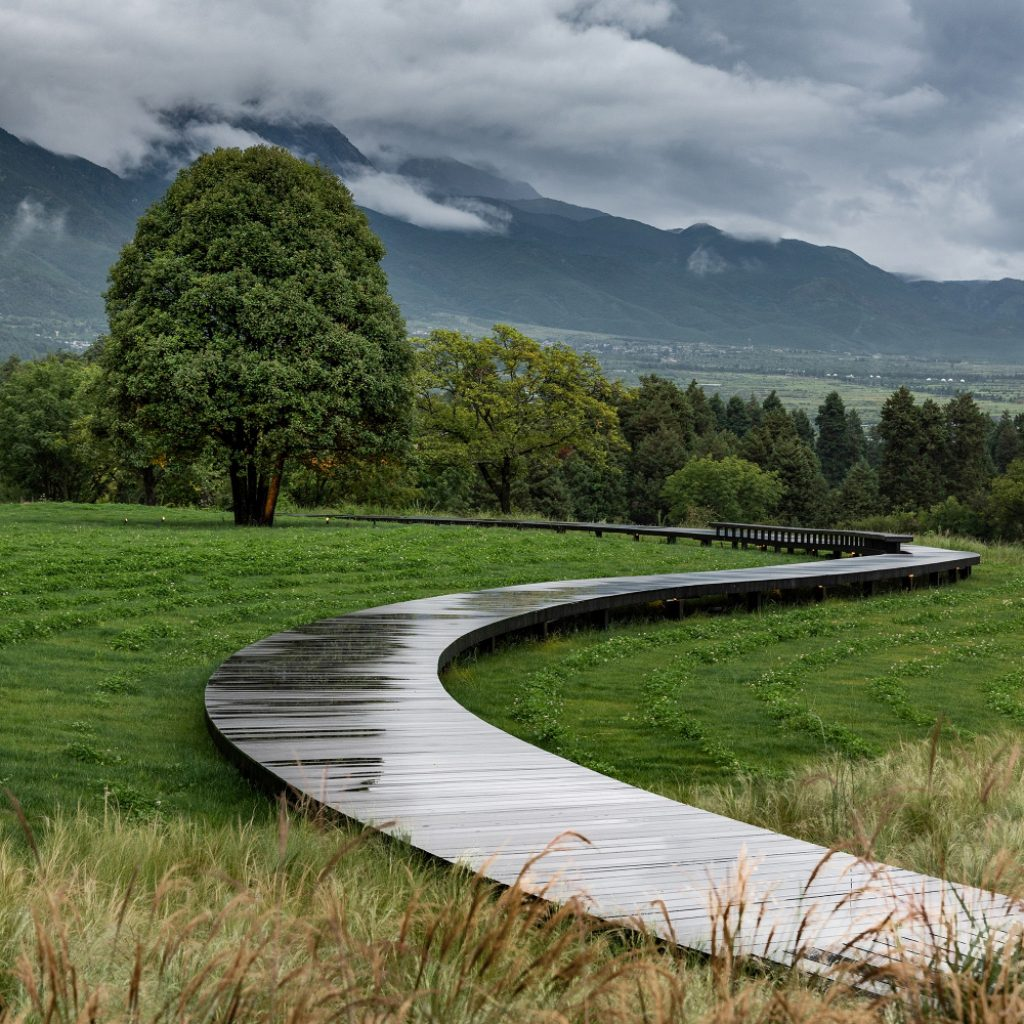 Alpine Garden by Z'scape