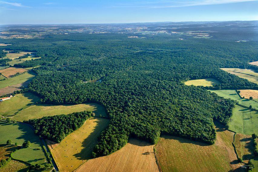 Вид на лес во Франции с высоты птичьего полета
