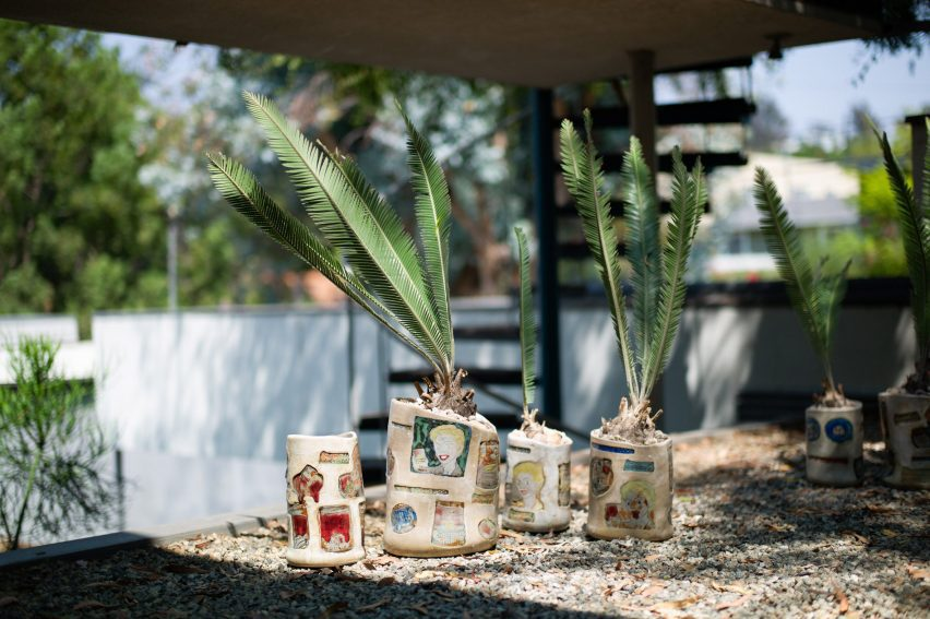 Plant pots with Campbell's soup brand imagery