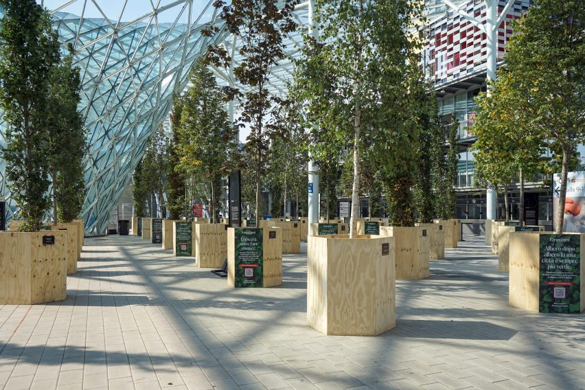 Temporary forest at Milan's Supersalone