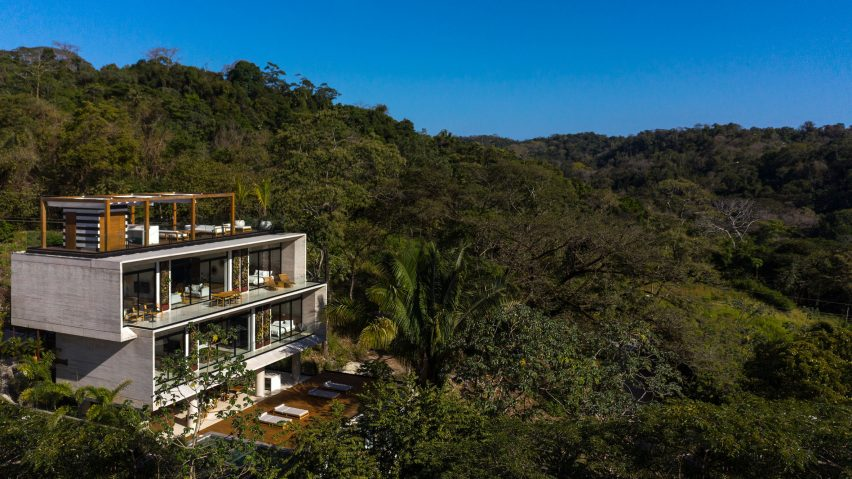 Guarumo building amongst the jungle