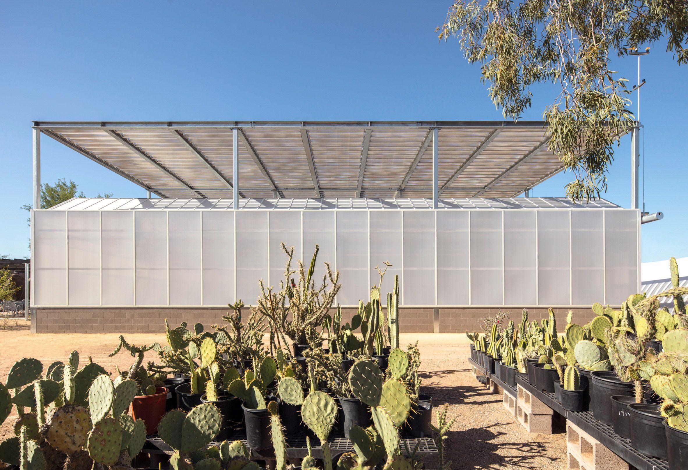 Hazel Hare Center включает в свой дизайн поликарбонат.