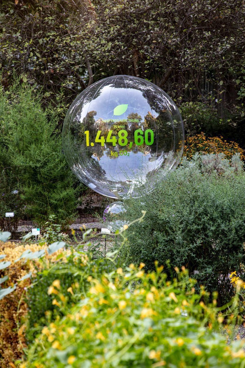 Sebuah bola transparan dengan nomor 1.448.60 tercetak di atasnya