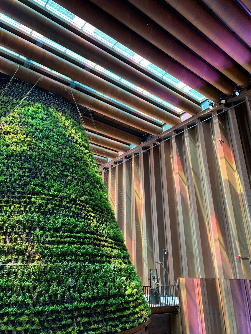 Цветной свет заполняет деревянную комнату вокруг вертикального сада.