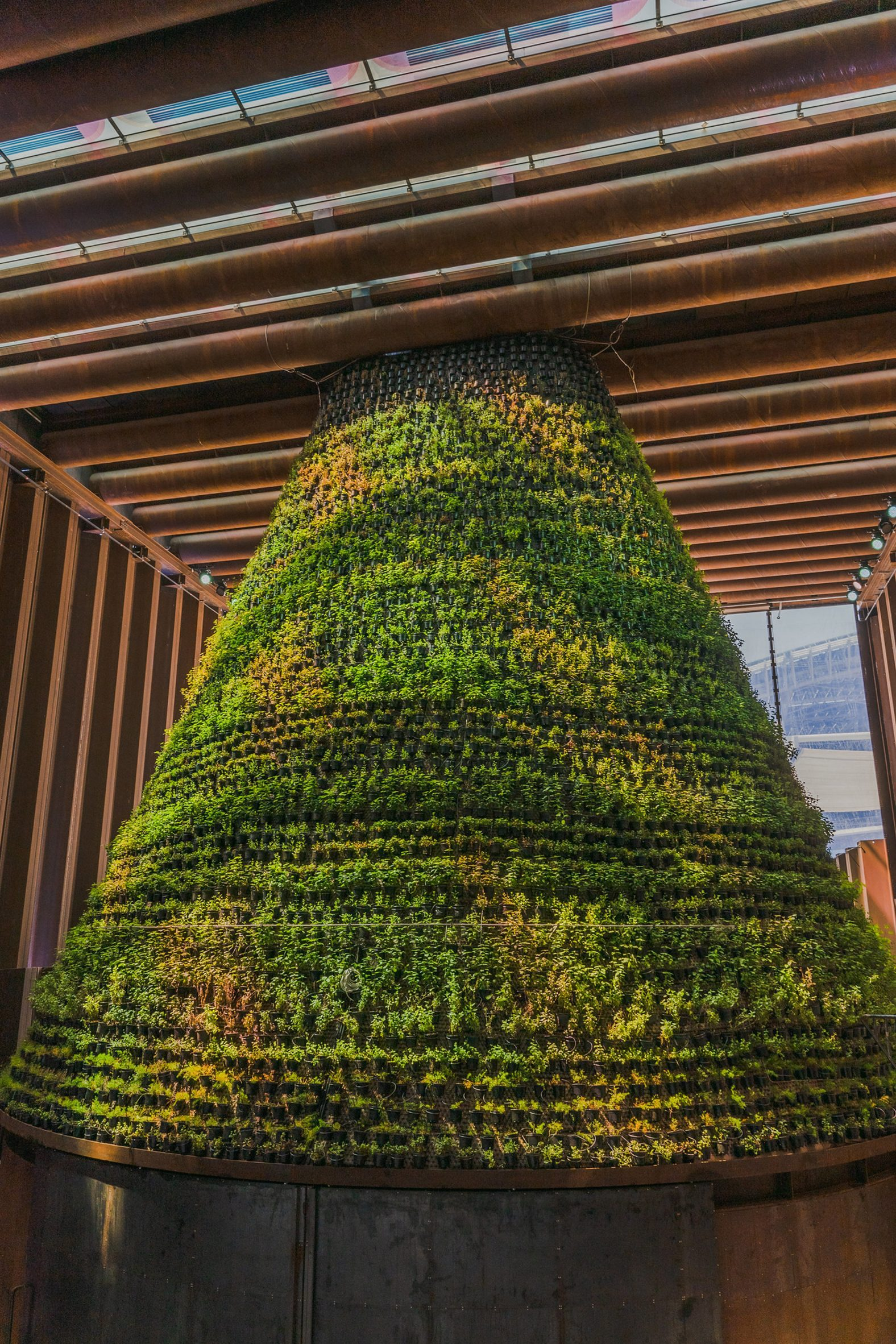 Coloured light falls on a cone-shaped vertical garden in the Dutch pavilion