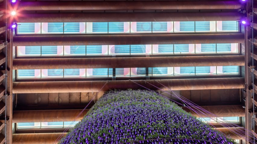 Solar panels by Marjane van Aubel on the Dutch Biotope pavilion at Expo 2020 Dubai