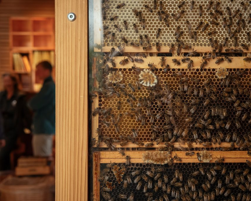 Bees in The Beezantium by Invisible Studio at The Newt in Somerset
