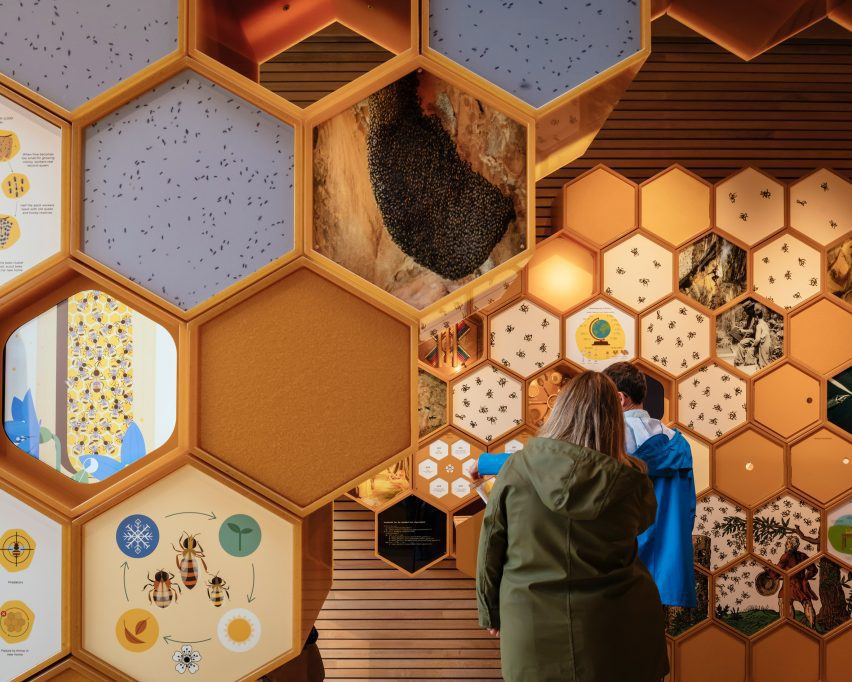 Exhibitions design for The Beezantium by Invisible Studio at The Newt in Somerset