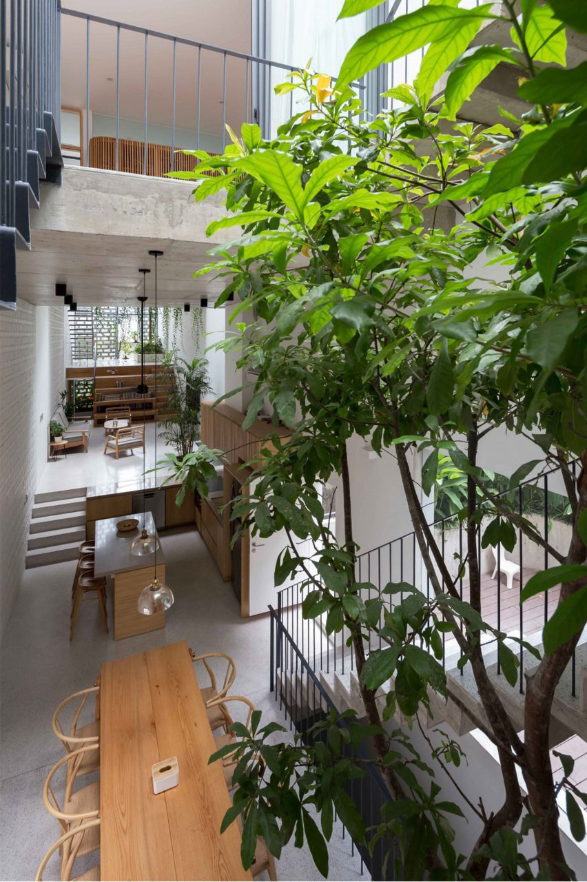 Trees inside CH House by ODDO Architects