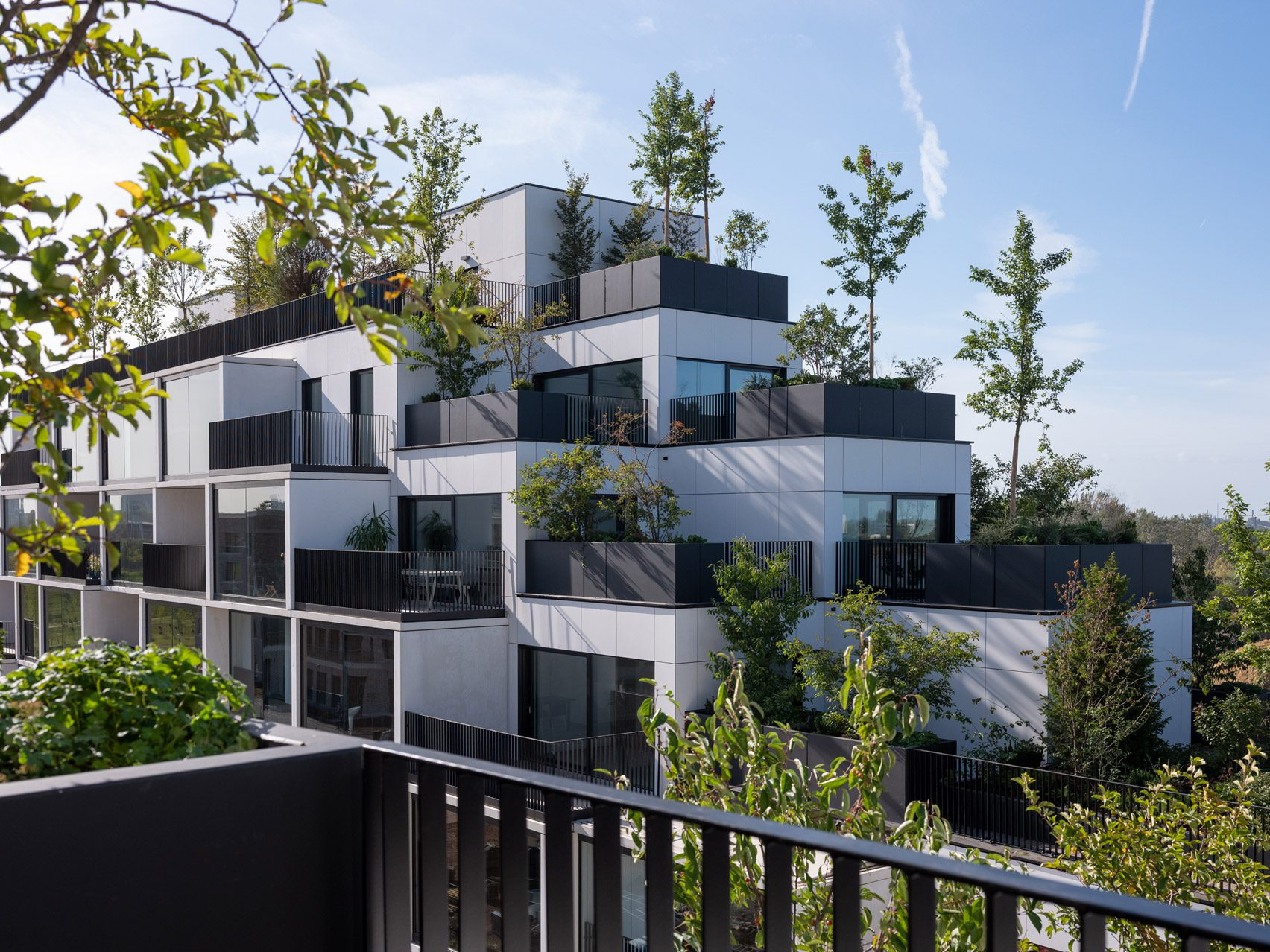 Plant-covered housing in Antwerp