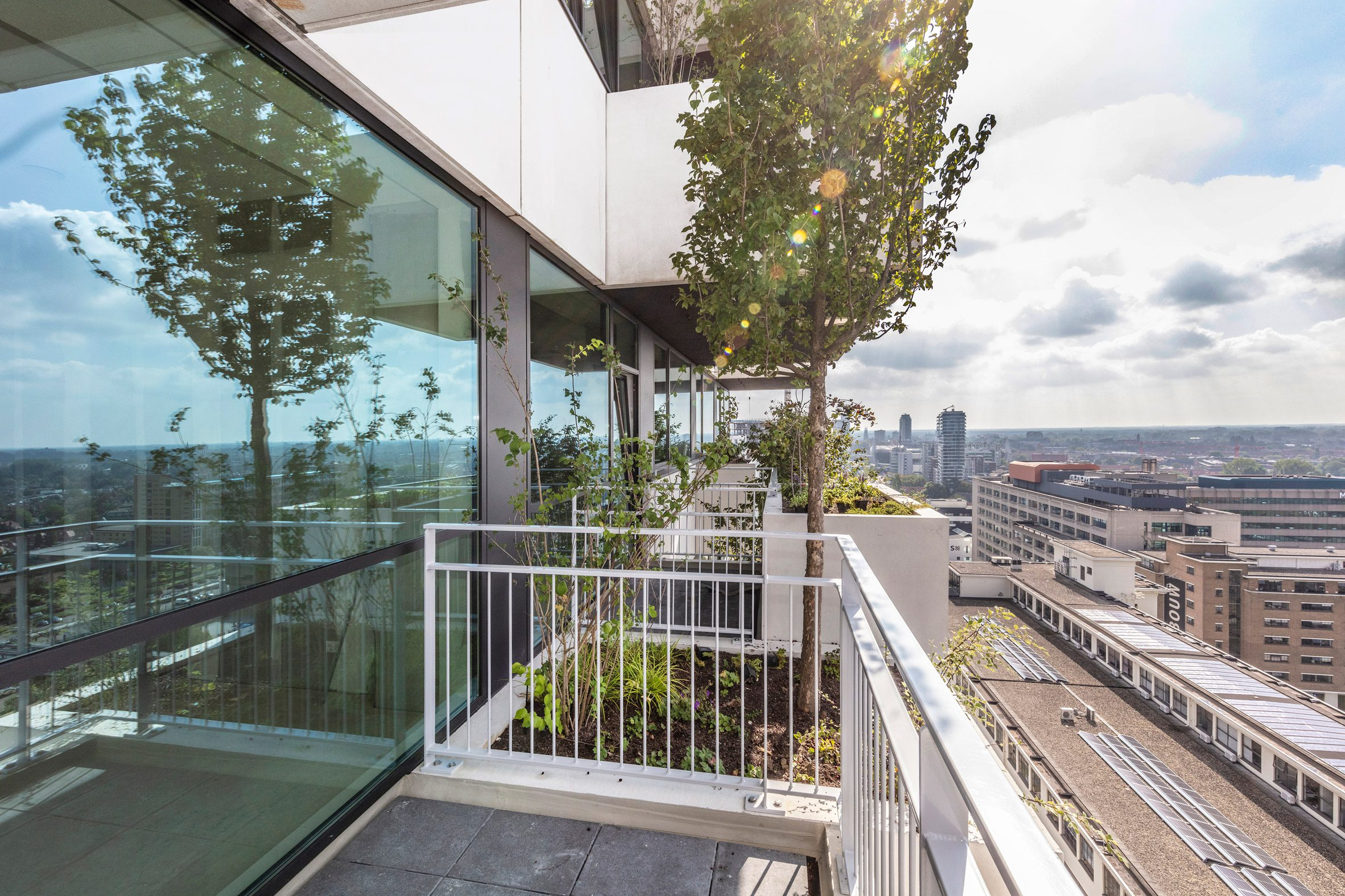 A tree and shrubbery fill a planter at Trudo Vertical Forest