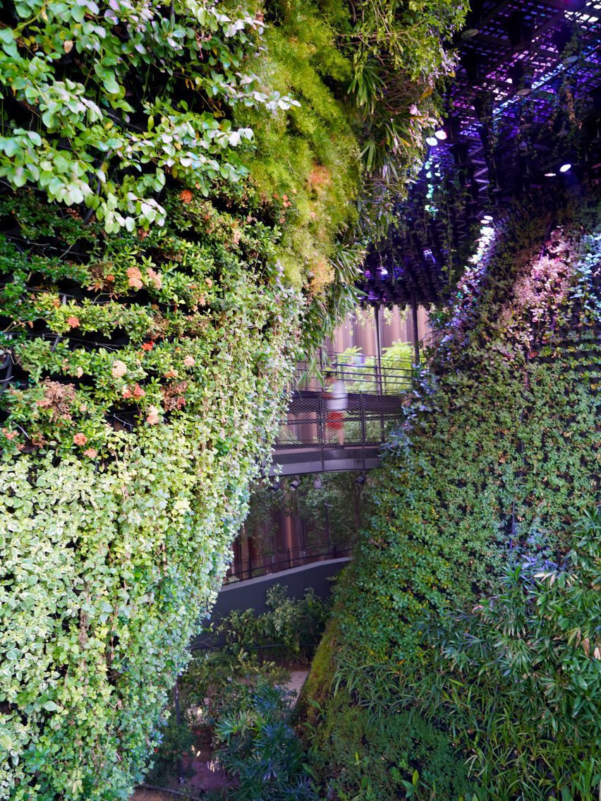 Plant-filled pavilion at Dubai Expo