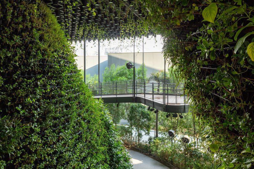 Plant-filled pavilion
